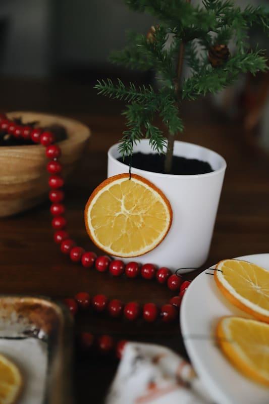orange slice christmas ornament