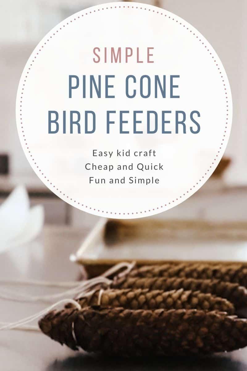 kid craft pine cone bird feeder
