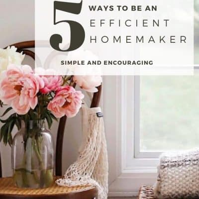 How to be an Efficient Homemaker