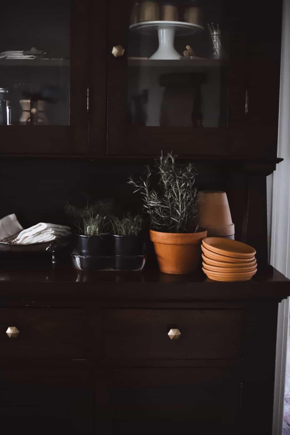starting an herb garden indoors on a wooden buffet with terra cotta pots