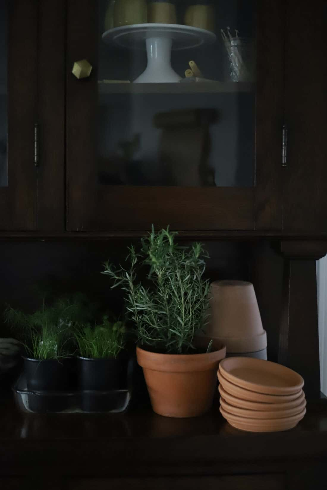 terra cotta pots sitting on a wooden buffet with herbs sitting beside them