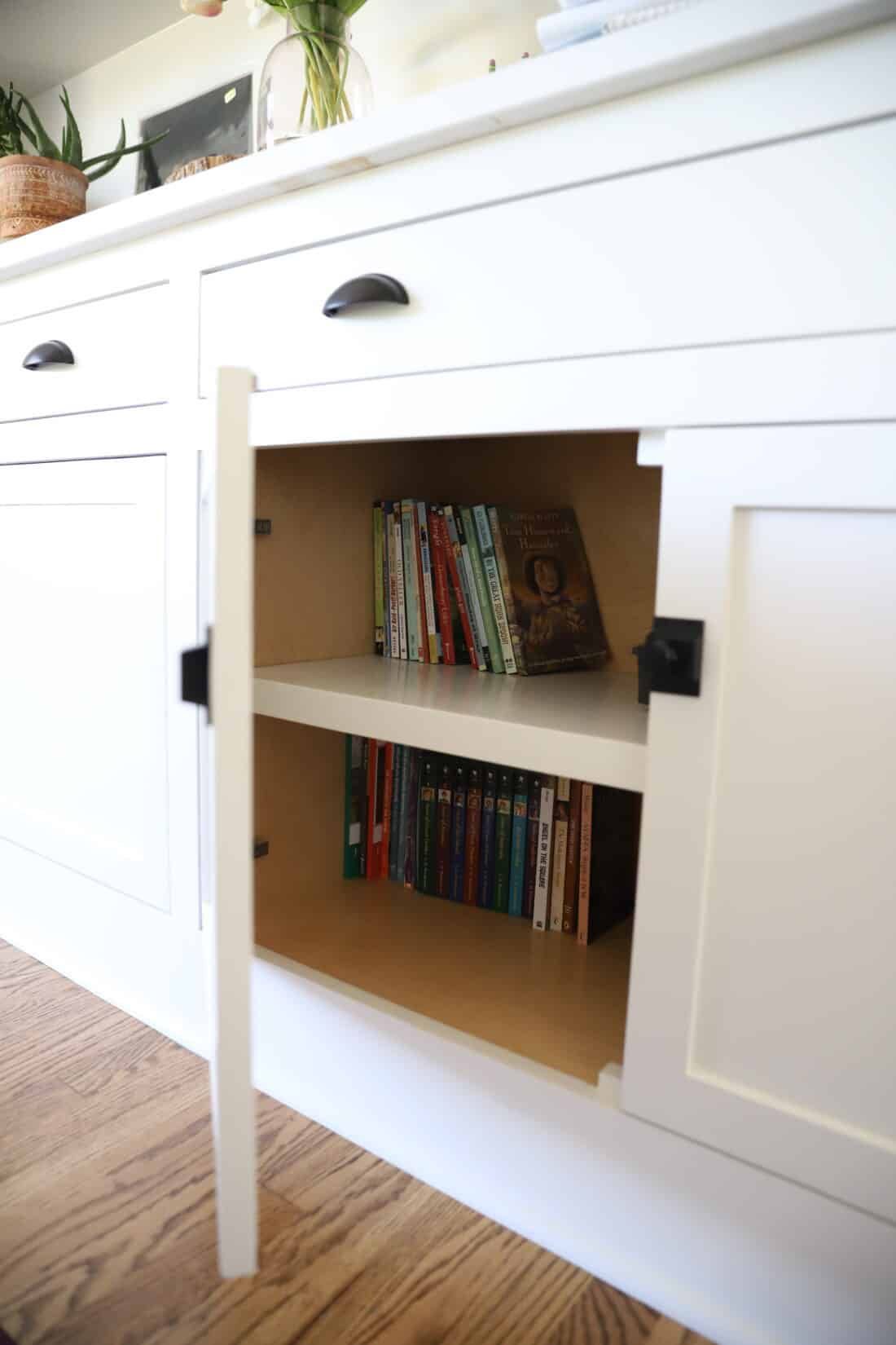 a cabinet full of living books for kids to read