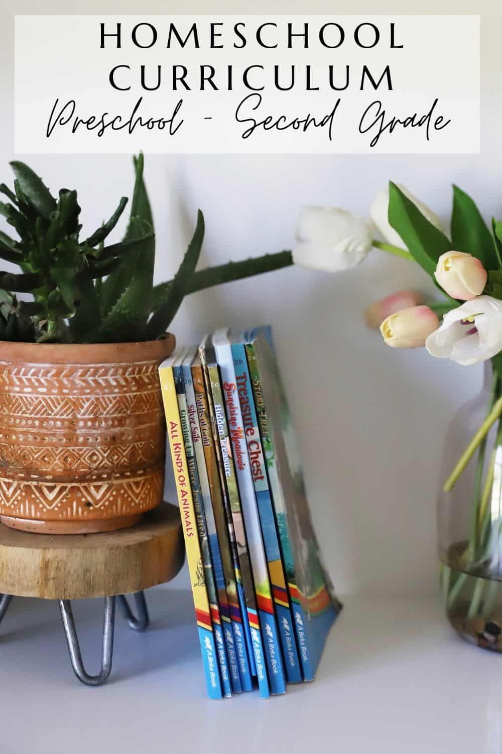 second grade reading books stacked against succulents