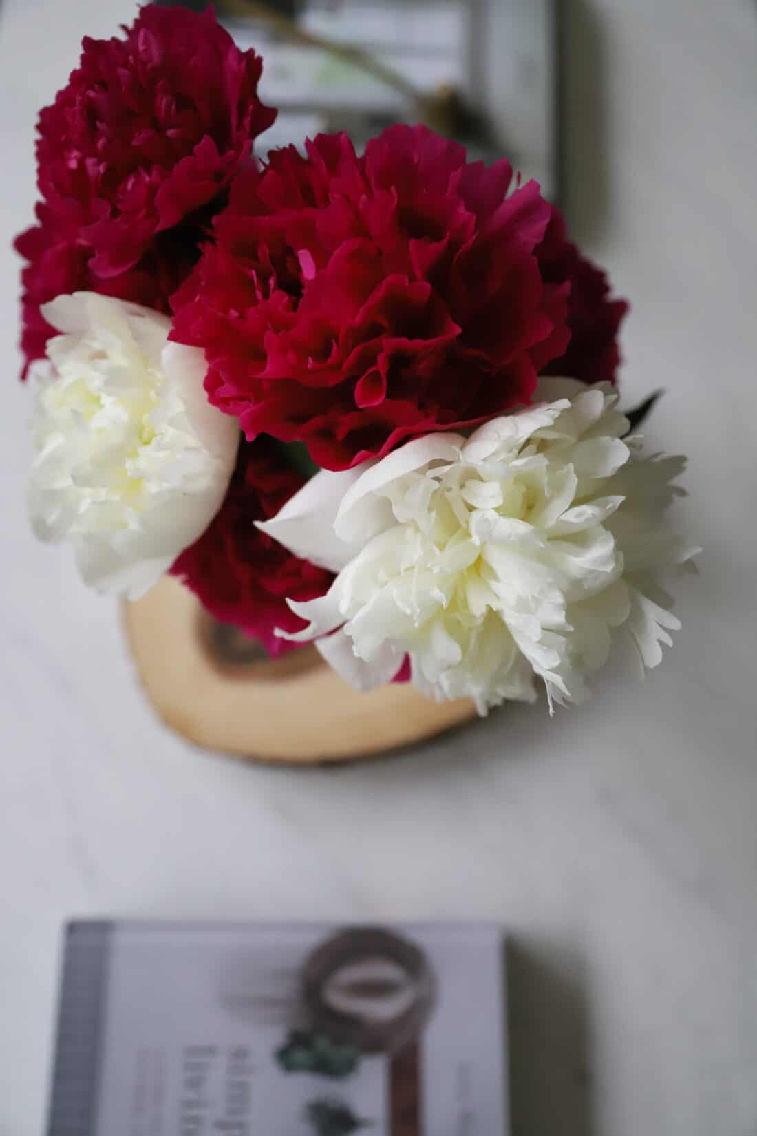 vase of peonies cut from a garden