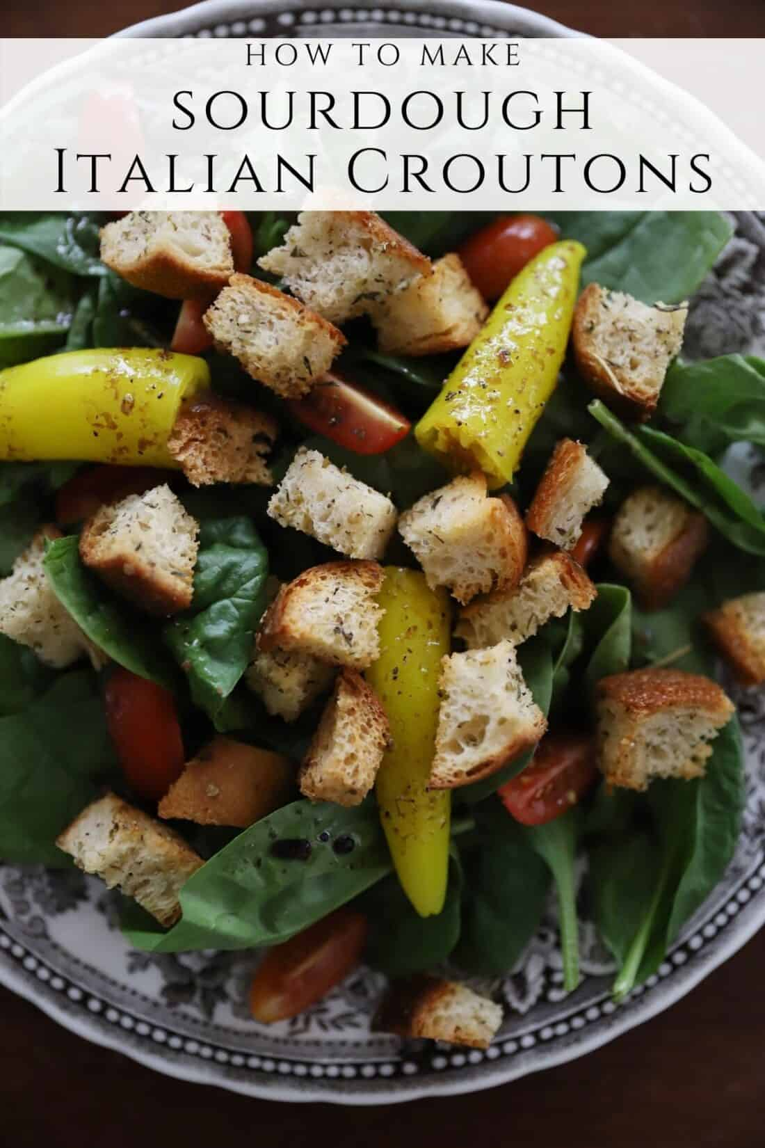 easy sourdough italian croutons from scratch on a brown and white plate