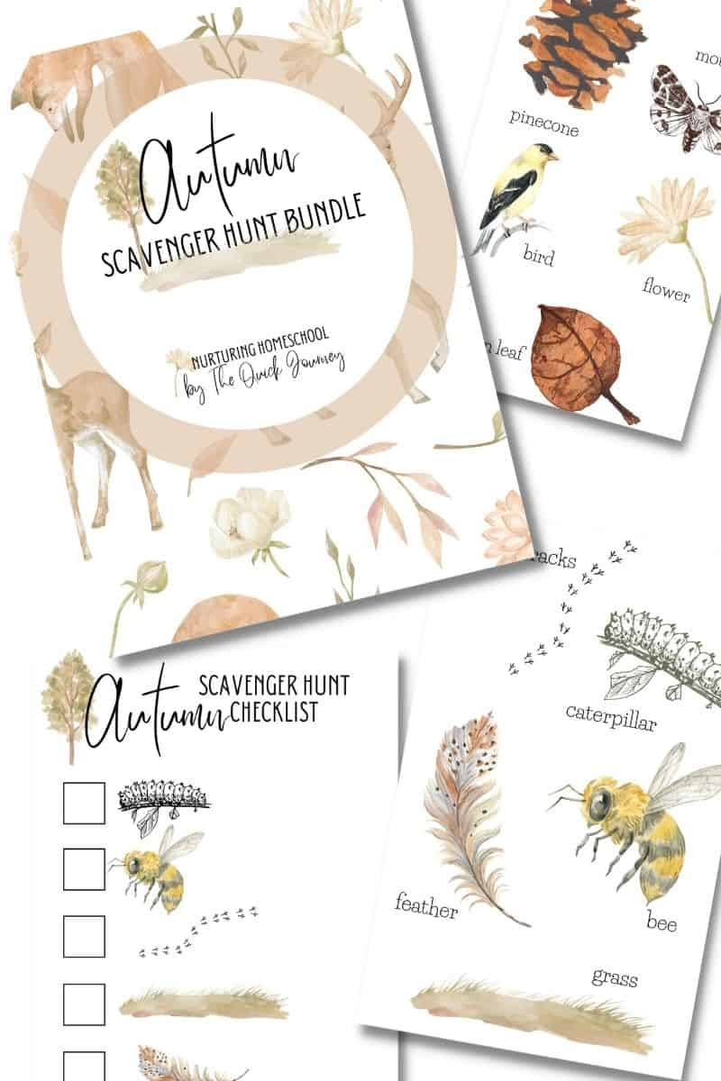 nature cards for kids